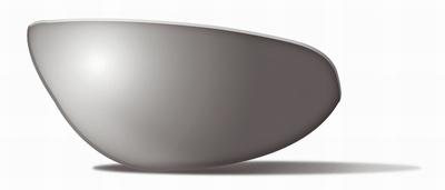 Polarized Smoke Grey glazen voor de ZEN