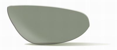 Polarized Smoke Green glazen voor de CENSOR