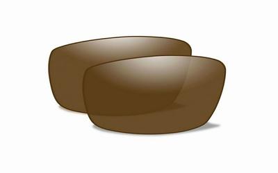 Polarized Bronzen glazen voor de REBEL